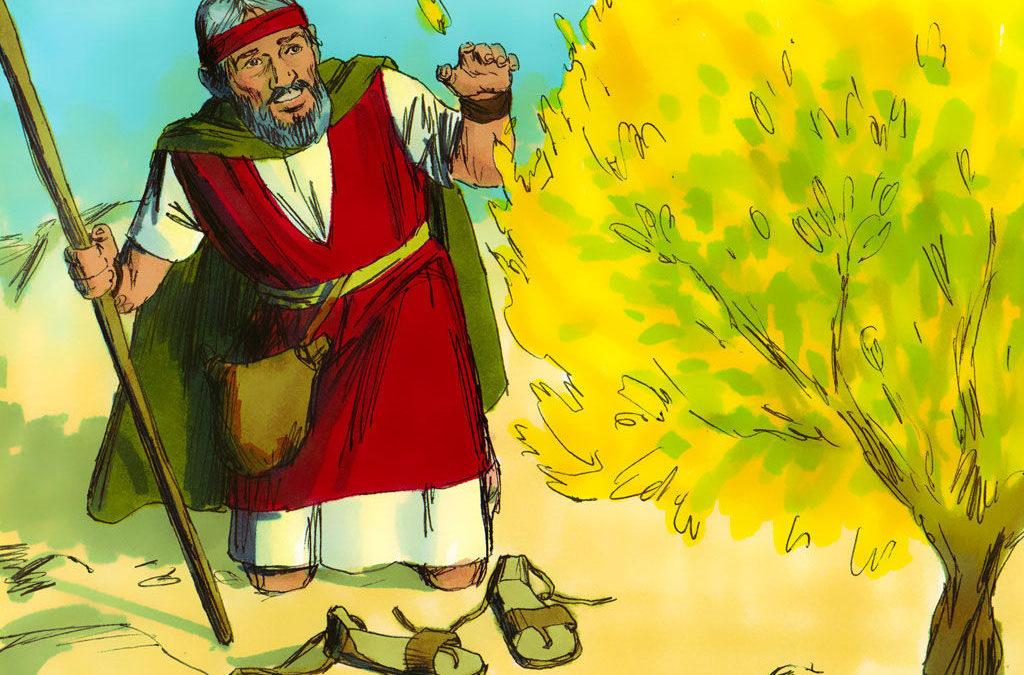 12. Moses – Humble Faith